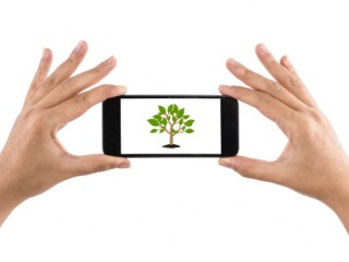 Smartphone with Ä°con Tree
